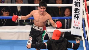 Akira Yaegashi v Pedro Guevara - WBO World Light Flyweight Title Bout