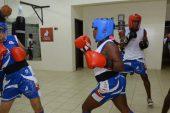 En Ecuador el boxeo aleja de las calles y las drogas a jóvenes de escasos recursos