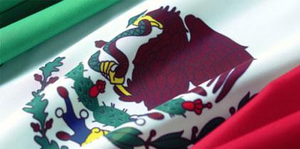 México terminó 2010 con 12 campeones1