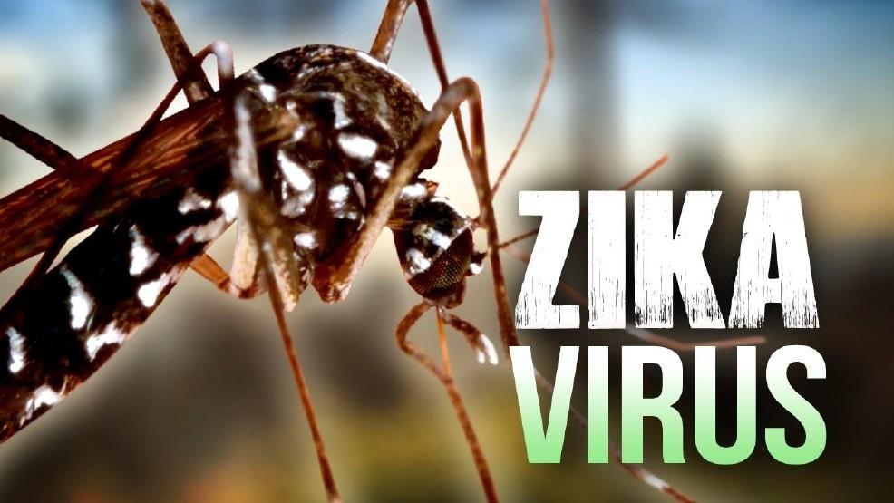 Asustada la gente del boxeo por el zika en Puerto Rico