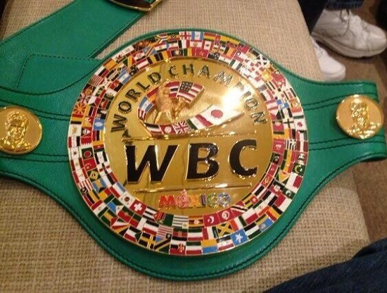 Boxeo mexicano es suspendido hasta nuevo aviso