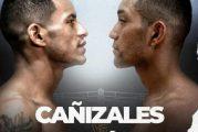 Esteban Bermúdez sorprende a Carlos Cañizales por nocaut y gana título de la AMB