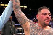 Andy Ruiz derrota por decisión unánime a Chris Arreola luego de superar caída